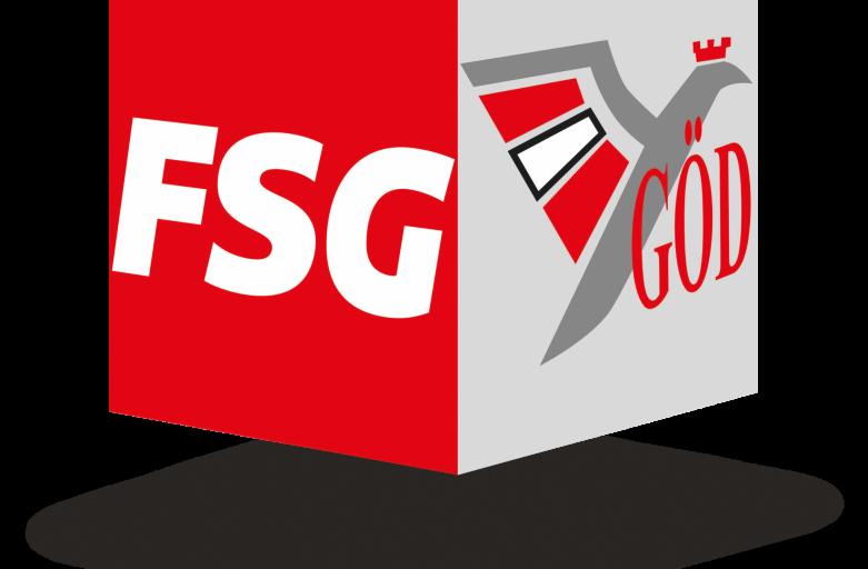 FSG-GOED-Wuerfel