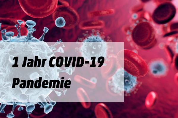 Ein Jahr COVID-19-Pandemie: Warum wir den Wert unserer öffentlichen Dienste überdenken müssen